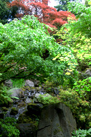 Japanese Garden - Portland - OR - May 10 2010 007