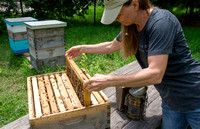 Shelley Rice - Beekeeper - May 23 2015 051