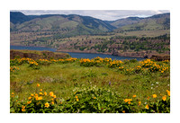 Columbia Gorge near The Dalles May 5 2010